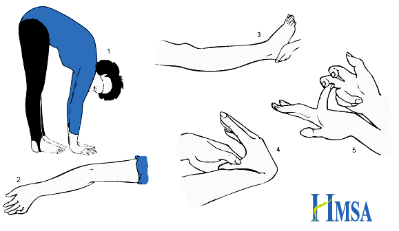 A white background with 5 images labelled 1 to 5. Number 1 is an image of a person bending over with their hands flat on the floor. 2, an image of a elbow over extended. 3, an image of leg with a knee over extending. 4, an image of someone pushing their thumb to their wrist. 5, an image of someone bending their little finger back. In the bottom right corner is a blue HMSA logo.